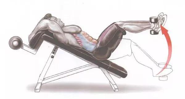 常见的举腿动作——上斜仰卧屈膝腿上摆