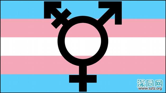 跨性别人群生存困境调查:多数人有遭受校园暴力经历