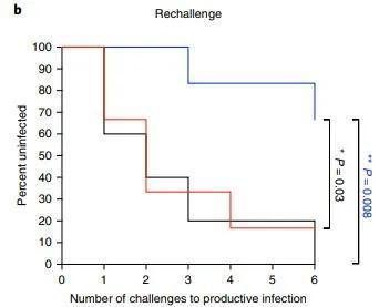 67%预防有效,新型抗艾滋疫苗取得重要进展