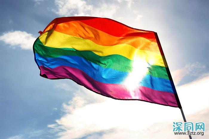 黑山:蒙特内哥罗承认同性伴侣法定关係